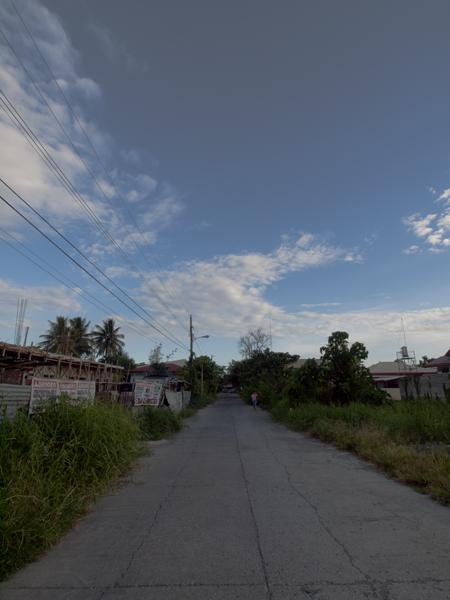 宿の前の道。緑が多くてのどか。