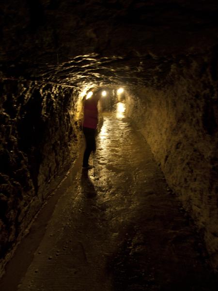 トンネルは狭いけど、そこそこ広いです。水が滴ってます。