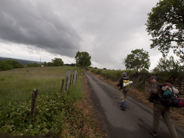 牧場を突き抜ける道が多い。