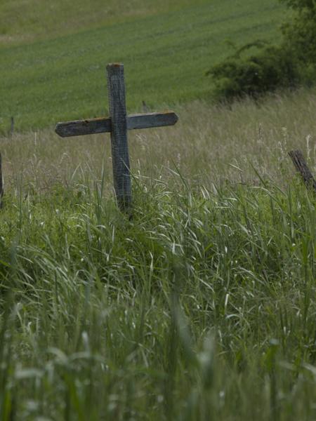 草むらの十字架って、風情あるね。トルストイの「一粒の麦」って感じがするし。
