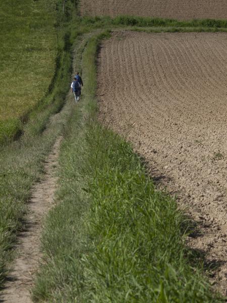 畑を横切る。雨になったら、泥街道。