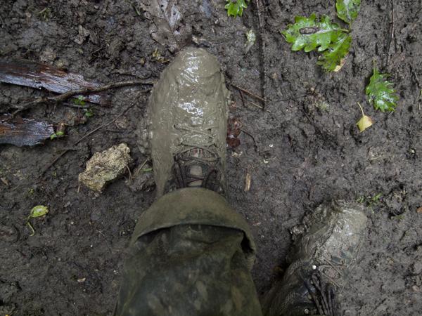 柔らかい泥地帯を歩いた靴。