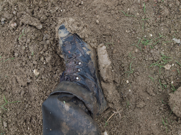 畑の泥はしつこい。落ちない。信じられないくらいに靴は重くなります。