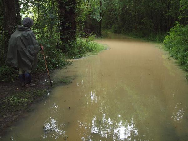 洪水で、巡礼路は水没。これ以上進めなくなりました。