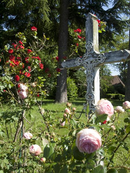 この辺、バラを咲かせた家が多いです。
