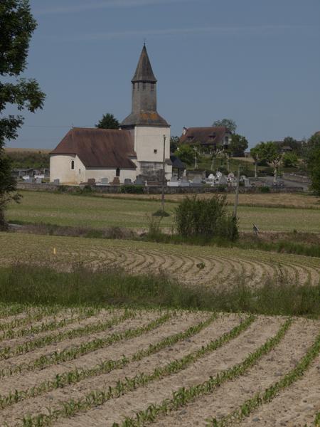 教会と畑。
