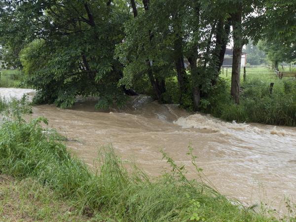 道路際まで、水が溢れてます。あと一歩で洪水。