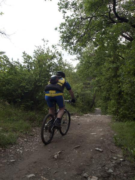 スペインに入って、自転車が増えた。