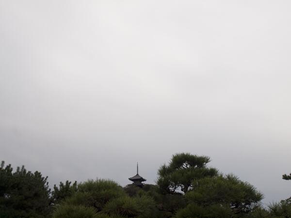 移築した三重塔。
