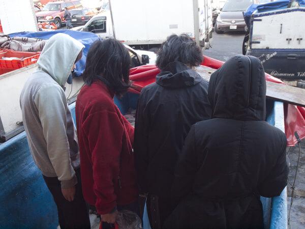 トラックの荷台に積まれたカンパチを吟味するメンバー。