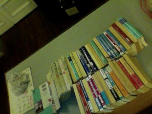 上下巻ものの片一方しかない本。捨ててしまいたい。