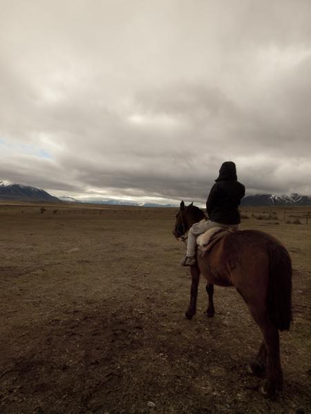 Yukoはママさんバレリーナなので、姿勢はいいんです、乗れない馬に乗っているにしては。