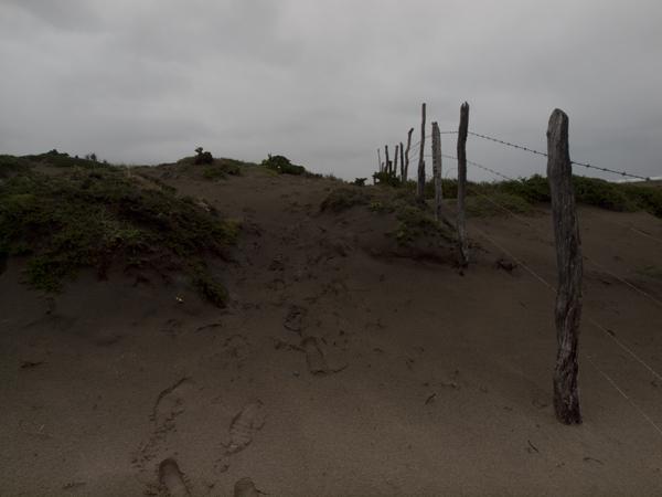 道なき道を歩き続け、鉄条網に行く手を阻まれ、それを乗り越えるも、やっぱり進めなくなった。どうしてぼくらは、いつも道を間違えるのだろう。