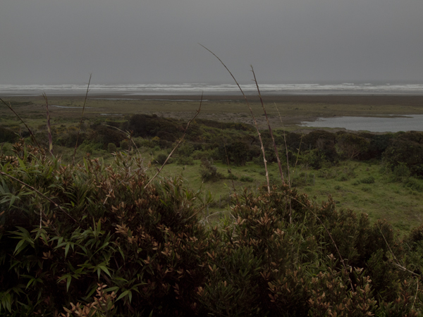 この先が太平洋。写真じゃわからないけれど、豪雨と強風。強烈に寒い。人はなぜ、わざわざこんなところに来るのか。